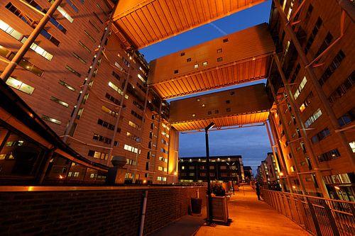 Het studentencomplex aan de Cambridgelaan op de Uithof in Utrecht (1) van Donker Utrecht