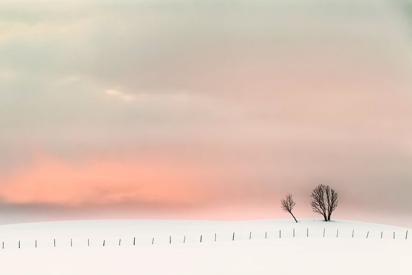 Magic Sunset van Niels den Otter