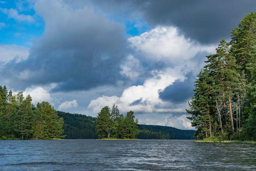 Eilandjes in het Svardlang meer in Zweden van Sjoerd van der Wal