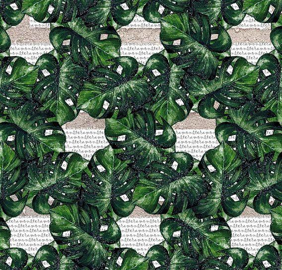 Monstera motif des feuilles