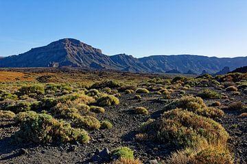 Teneriffa - Die Weiten der Cañadas mit dem Alto de Guajara