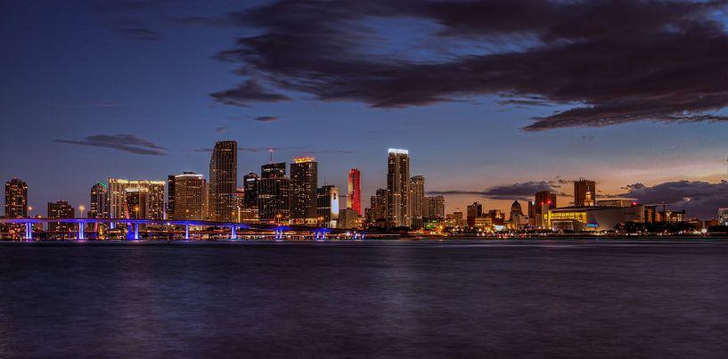 Panorama van Downtown Miami van Rene Ladenius