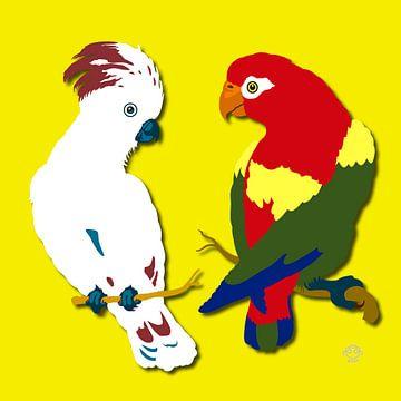 Papegaaien van Marco Roling