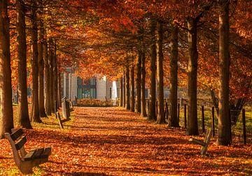 Herfst in Simpelveld