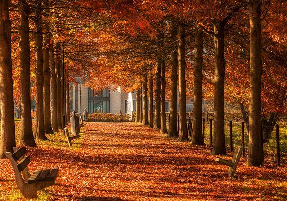 Herfst in Simpelveld van John Kreukniet