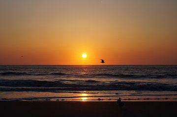zonsondergang van Andrea Ooms