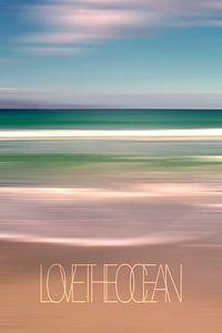 LOVE THE OCEAN I van