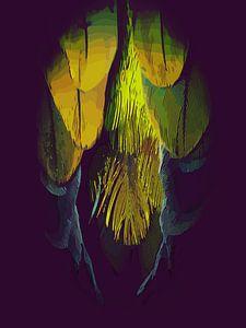 Veren van een vogel, van een papegaai