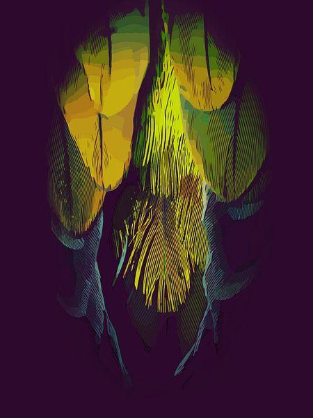 Veren van een vogel, van een papegaai van The Art Kroep