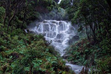 Waterval in een bos van