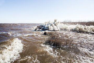 Een ijzig koud wad van Roel Bergsma