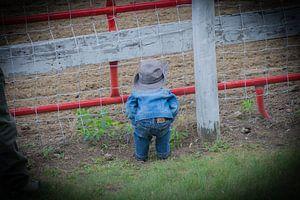 Mini cowboy van Linda van der Veer