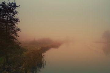 ochtendnevel,morning mist,Morgennebel,brume matinale van Hans Sluimer