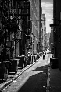 Public Alley van