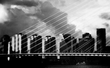 Rotterdam - Erasmusbrug - Maas - zwart wit van Robert-Jan van Lotringen