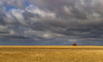 Kleines Haus auf der Prärie 2, Kanada von Adelheid Smitt
