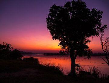 Pastellfarbener Sonnenaufgang von Karin vd Waal