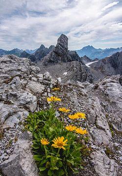Vallugaspitze, Sankt Anton am Arlberg van Lucas De Jong