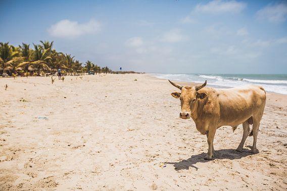 Paradise beach van Andy Troy
