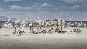 Burning Man 2016 - Art Installation Chrome Flowers  van