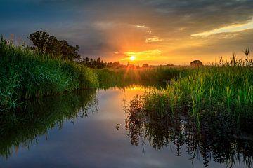 Wenn die Sonne für eine Weile zwischen den Wolken scheint von Nando Harmsen