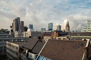 Rotterdamse daken I van
