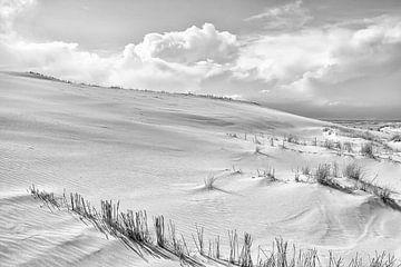 Kust Duinen Zwart Wit van Jan Brons