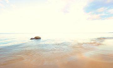 Stein im Meer von Lars Tuchel