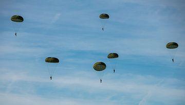Des parachutistes tombent sur la bruyère ginkel