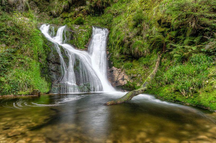 Allerheiligen Waterfall in the Black Forest van Michael Valjak