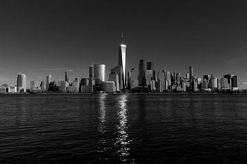 Freedom Tower van Edward van Hees