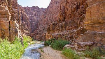 Wadi Mujib in Jordanien von Jessica Lokker