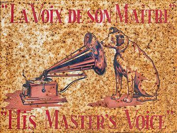 His Master's Voice van Martin Bergsma