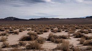 Californië woestijn van