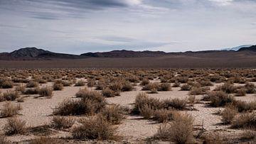 Californië woestijn van Jasper Verolme