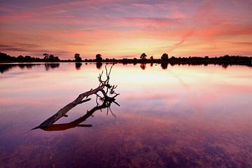 Ven Aekingerzand bij zonsondergang van John Leeninga