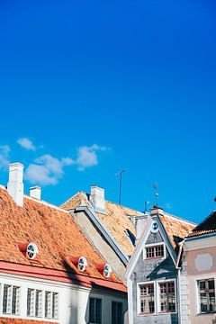 Daken in Tallinn van Patrycja Polechonska