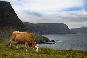 Uig Highland