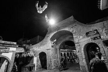 Het nachtleven van Essaouira van Ellis Peeters