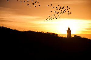 Zonsondergang in de Noordzee van