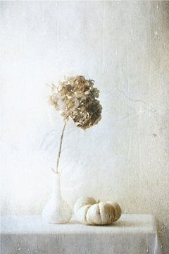 Autumn Feelings, Delphine Devos von 1x