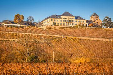 Schloss Johannisberg im Rheingau van Christian Müringer