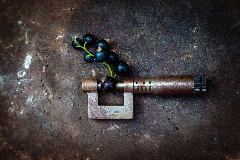12 mm von Diane Cruysberghs