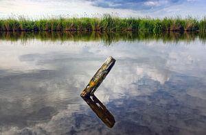 Waterland 03 van