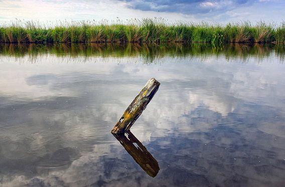 Waterland 03 van Peter Bongers