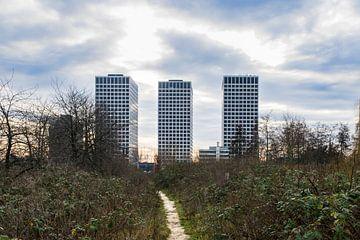 menschenleerer Fußweg zu den modernen Wohnungen von Patrick Verhoef