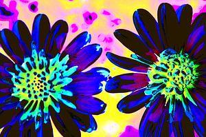 Zwei Blumen von De Rover