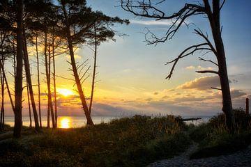 Zonsondergang op het weststrand van Claudia Moeckel
