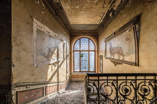 Leeuwen decoratie in verlaten villa van