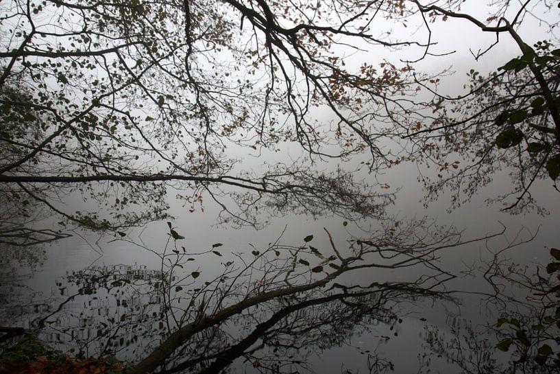 Mirror lake van Jelle Ursem